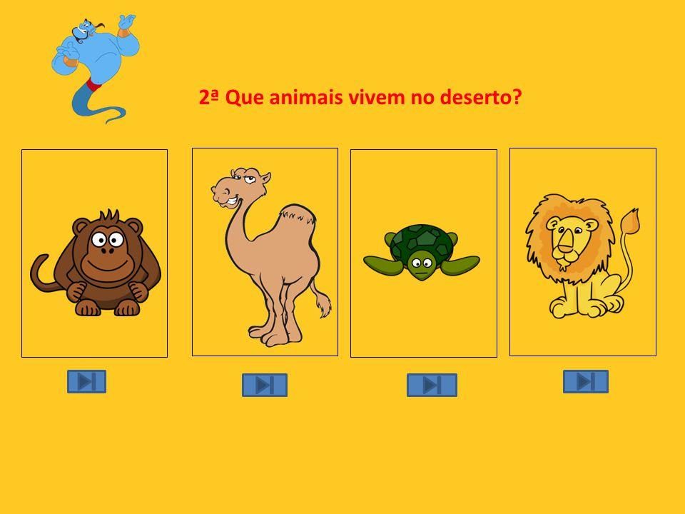 2ª Que animais vivem no deserto?