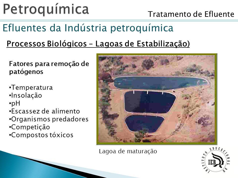 Tratamento de Efluente Efluentes da Indústria petroquímica Processos Biológicos – Lagoas de Estabilização) Lagoa de maturação Fatores para remoção de