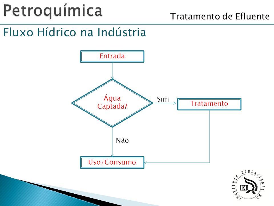 Tratamento de Efluente Fluxo Hídrico na Indústria Entrada Água Captada? Uso/Consumo Tratamento Sim Não