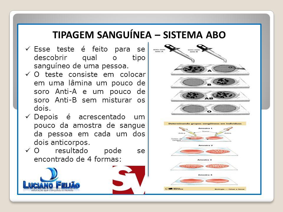 N° GAMETAS DIFERENTES 2 N TIPAGEM SANGUÍNEA – SISTEMA ABO Esse teste é feito para se descobrir qual o tipo sanguíneo de uma pessoa. O teste consiste e