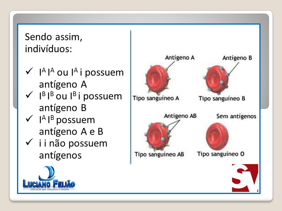 Sendo assim, indivíduos: I A I A ou I A i possuem antígeno A I B I B ou I B i possuem antígeno B I A I B possuem antígeno A e B i i não possuem antíge