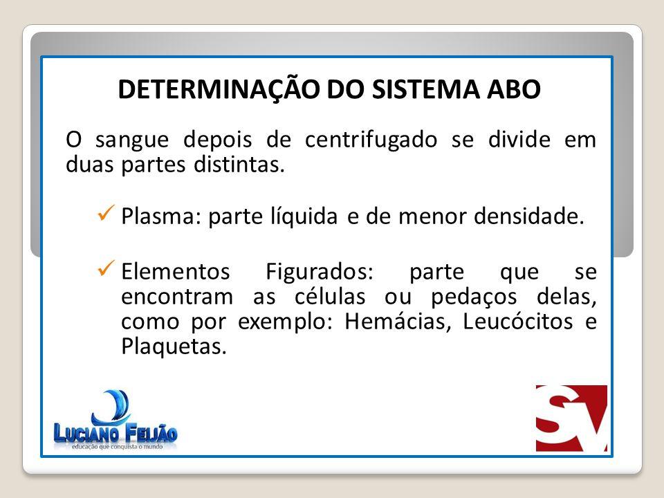 N° GAMETAS DIFERENTES 2 N DETERMINAÇÃO DO SISTEMA ABO O sangue depois de centrifugado se divide em duas partes distintas. Plasma: parte líquida e de m