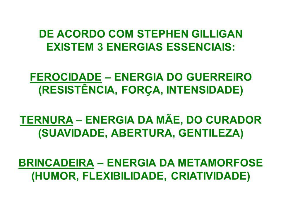 DE ACORDO COM STEPHEN GILLIGAN EXISTEM 3 ENERGIAS ESSENCIAIS: FEROCIDADE – ENERGIA DO GUERREIRO (RESISTÊNCIA, FORÇA, INTENSIDADE) TERNURA – ENERGIA DA MÃE, DO CURADOR (SUAVIDADE, ABERTURA, GENTILEZA) BRINCADEIRA – ENERGIA DA METAMORFOSE (HUMOR, FLEXIBILIDADE, CRIATIVIDADE)