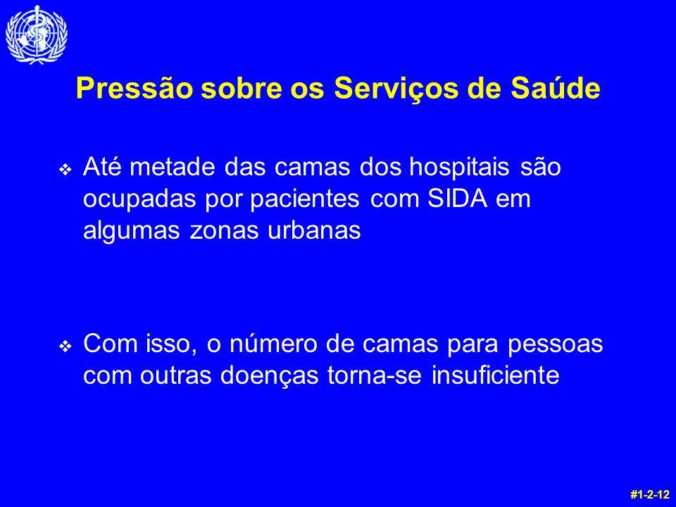 Pressão sobre os Serviços de Saúde v Até metade das camas dos hospitais são ocupadas por pacientes com SIDA em algumas zonas urbanas v Com isso, o núm