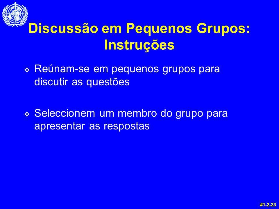 Discussão em Pequenos Grupos: Instruções v Reúnam-se em pequenos grupos para discutir as questões v Seleccionem um membro do grupo para apresentar as