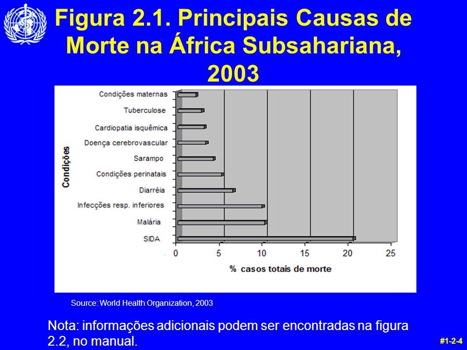 Source: World Health Organization, 2003 #1-2-4 Figura 2.1. Principais Causas de Morte na África Subsahariana, 2003 Nota: informações adicionais podem