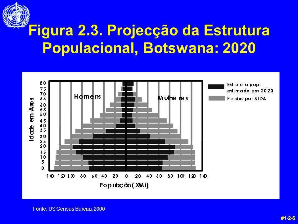 #1-2-6 Figura 2.3. Projecção da Estrutura Populacional, Botswana: 2020 Fonte: US Census Bureau, 2000