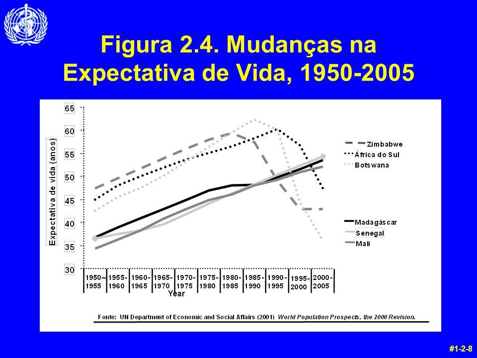Year #1-2-8 Figura 2.4. Mudanças na Expectativa de Vida, 1950-2005
