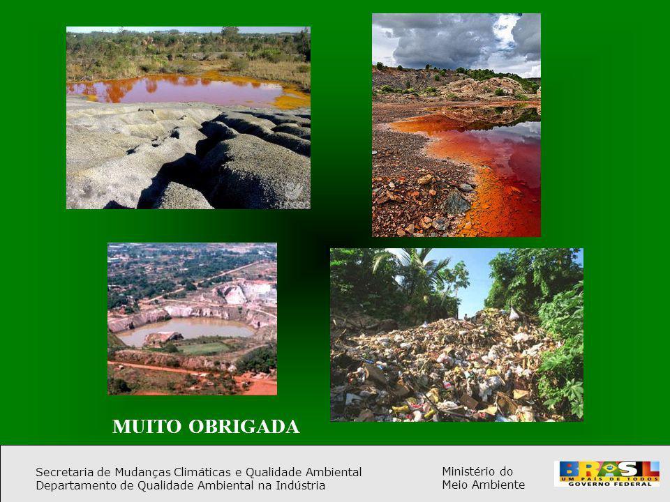 Secretaria de Mudanças Climáticas e Qualidade Ambiental Departamento de Qualidade Ambiental na Indústria Ministério do Meio Ambiente MUITO OBRIGADA