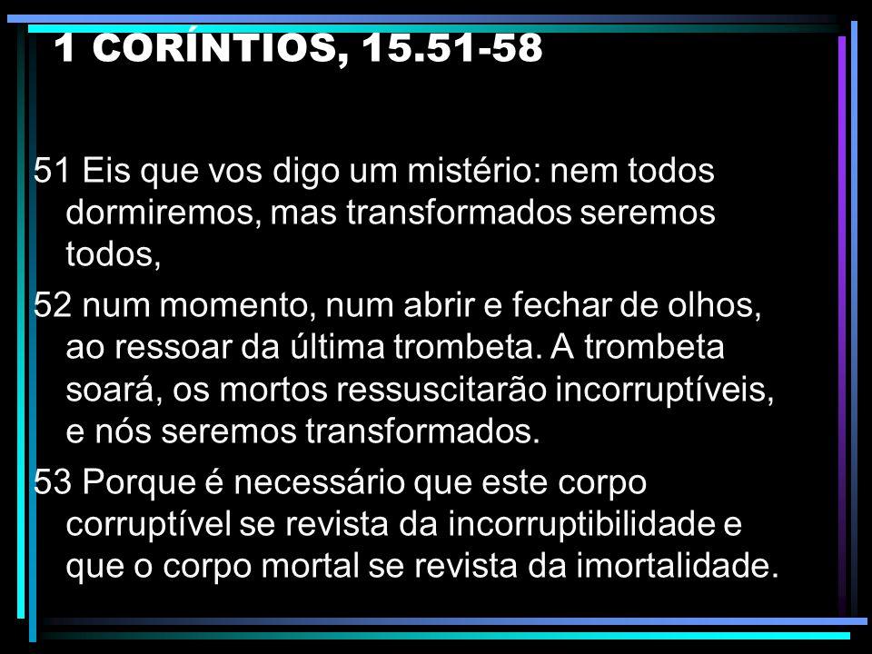 JOÃO, 14.1-3 - Não fiquem confusos; - Jesus vai preparar lugar para os seus; - Ele voltará e receberá os seus e os levará à casa do Pai.