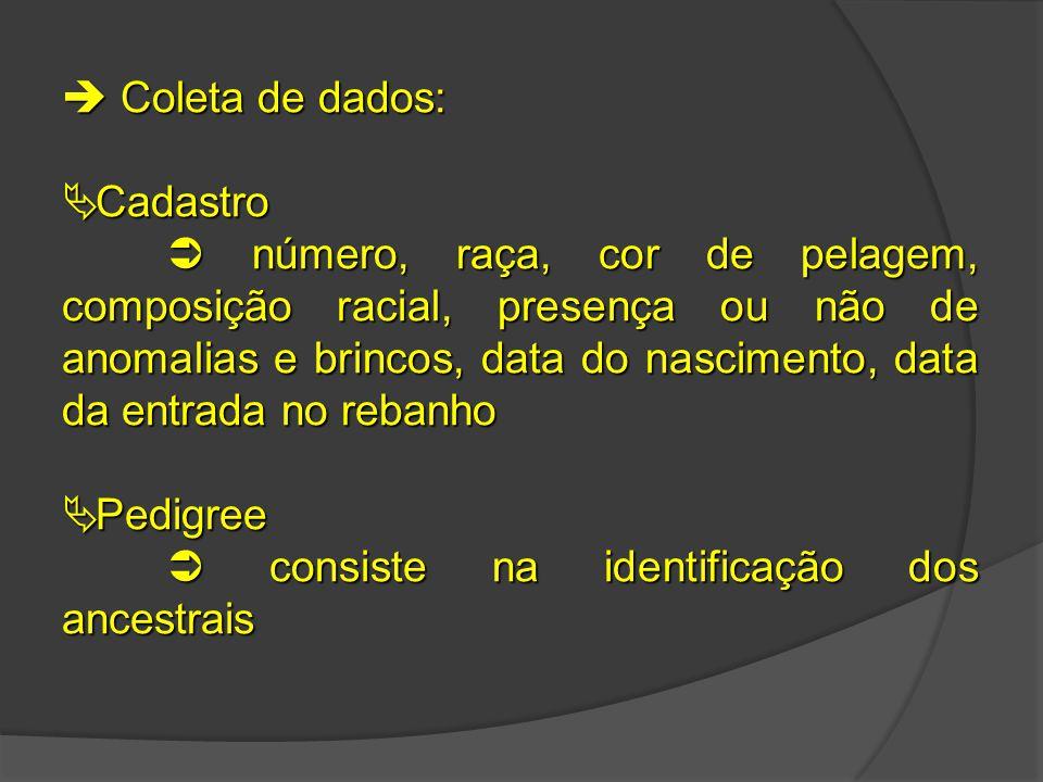  Coleta de dados:  Cadastro  número, raça, cor de pelagem, composição racial, presença ou não de anomalias e brincos, data do nascimento, data da e