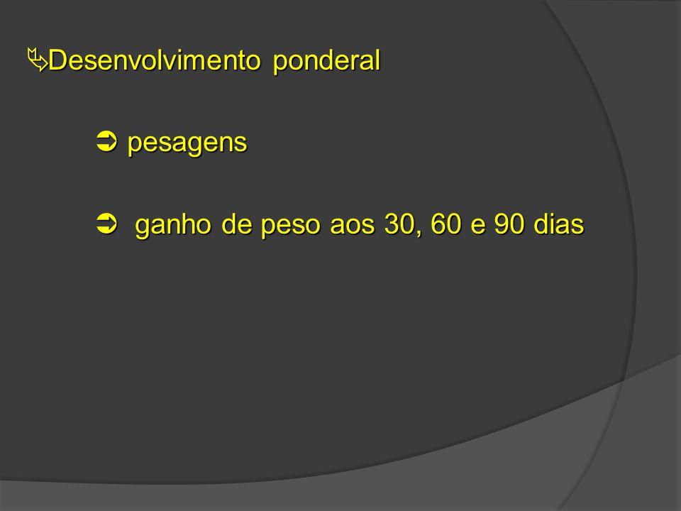  Desenvolvimento ponderal  pesagens  ganho de peso aos 30, 60 e 90 dias