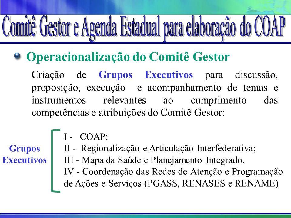 Operacionalização do Comitê Gestor Criação de Grupos Executivos para discussão, proposição, execução e acompanhamento de temas e instrumentos relevant