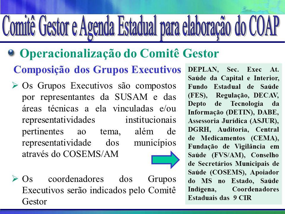 Operacionalização do Comitê Gestor Composição dos Grupos Executivos  Os Grupos Executivos são compostos por representantes da SUSAM e das áreas técni
