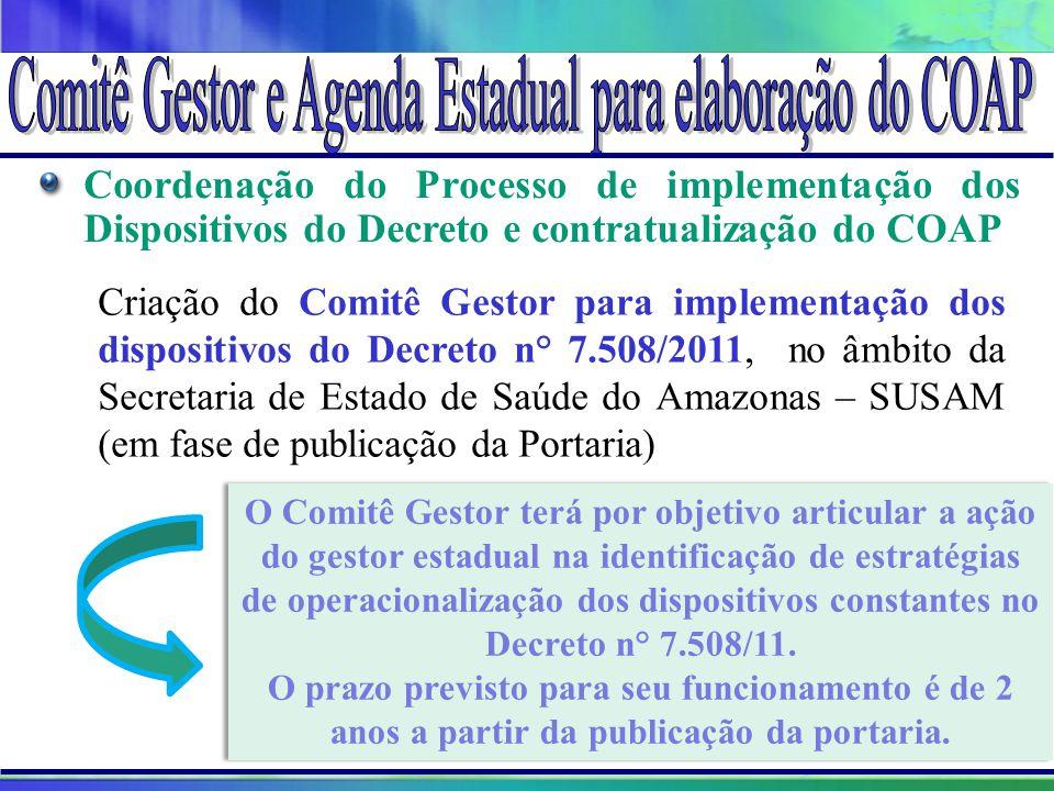Projeto Amigo do Lago da Serra da Mesa O Comitê Gestor terá por objetivo articular a ação do gestor estadual na identificação de estratégias de operac
