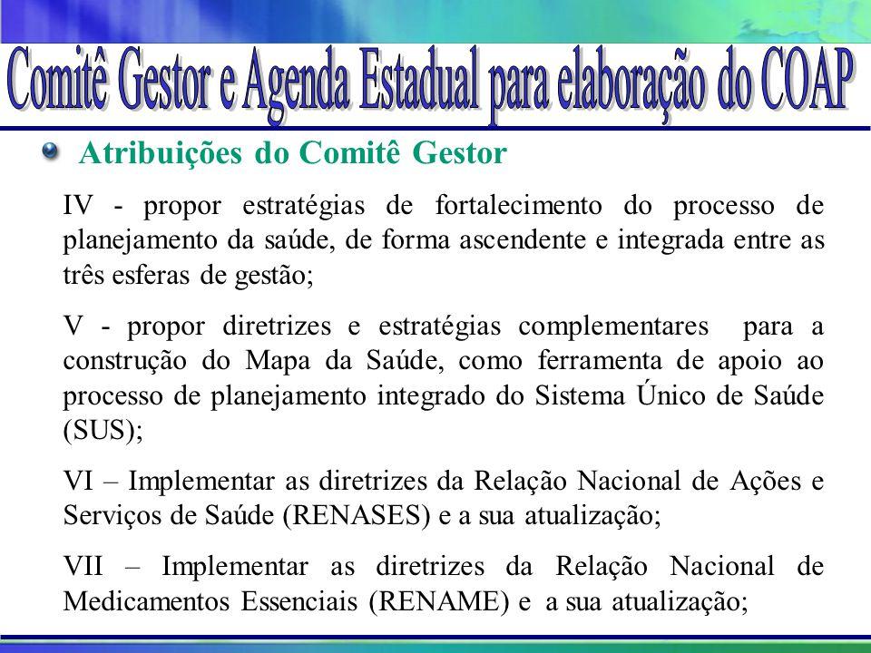 Projeto Amigo do Lago da Serra da Mesa Atribuições do Comitê Gestor IV - propor estratégias de fortalecimento do processo de planejamento da saúde, de