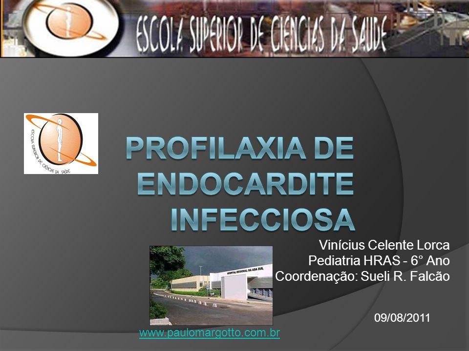 Vinícius Celente Lorca Pediatria HRAS - 6° Ano Coordenação: Sueli R. Falcão 09/08/2011 www.paulomargotto.com.br
