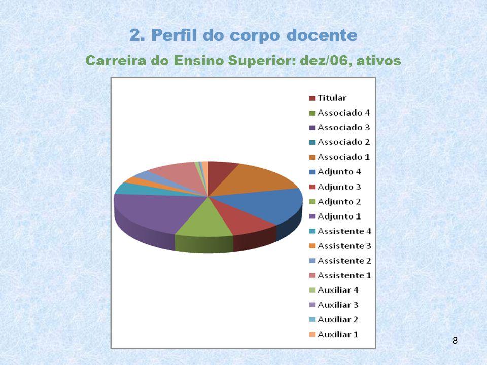 2. Perfil do corpo docente Carreira do Ensino Superior: dez/06, ativos 8