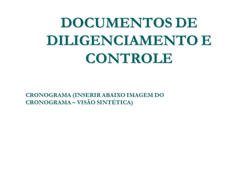 DOCUMENTOS DE DILIGENCIAMENTO E CONTROLE CRONOGRAMA (INSERIR ABAIXO IMAGEM DO CRONOGRAMA – VISÃO SINTÉTICA)