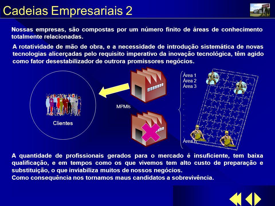Cadeias Empresariais 2 MPMIs Área 1 Área 2 Área 3.