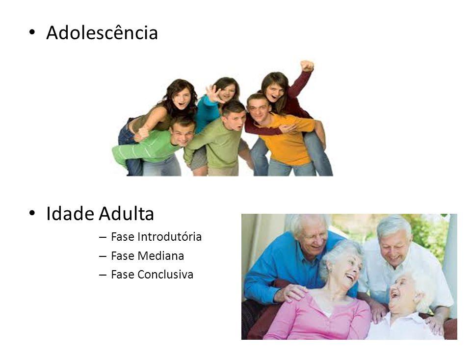 Adolescência Idade Adulta – Fase Introdutória – Fase Mediana – Fase Conclusiva