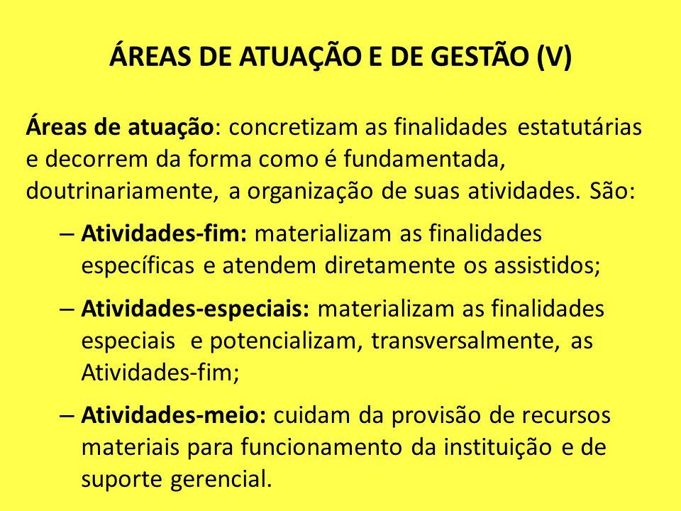 ÁREAS DE ATUAÇÃO E DE GESTÃO (V) Áreas de atuação: concretizam as finalidades estatutárias e decorrem da forma como é fundamentada, doutrinariamente,