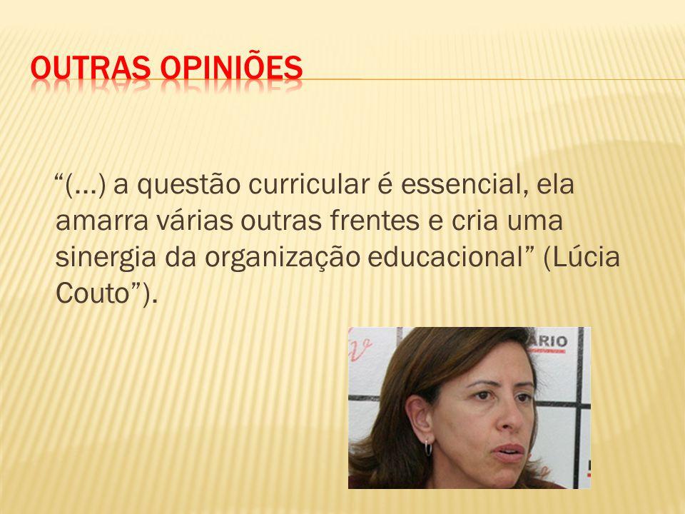 (...) a questão curricular é essencial, ela amarra várias outras frentes e cria uma sinergia da organização educacional (Lúcia Couto ).
