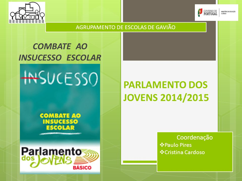 PARLAMENTO DOS JOVENS 2014/2015 COMBATE AO INSUCESSO ESCOLAR AGRUPAMENTO DE ESCOLAS DE GAVIÃO Coordenação  Paulo Pires  Cristina Cardoso