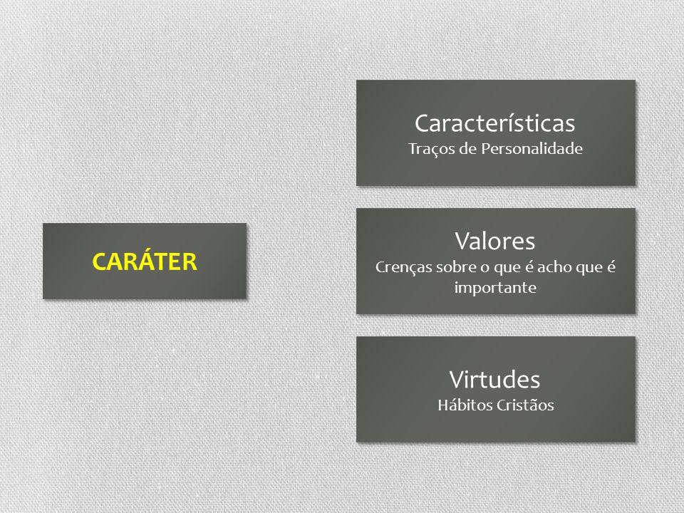 CARÁTER Características Traços de Personalidade Características Traços de Personalidade Valores Crenças sobre o que é acho que é importante Valores Cr