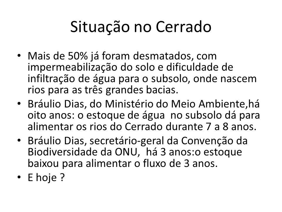 Situação no Cerrado Mais de 50% já foram desmatados, com impermeabilização do solo e dificuldade de infiltração de água para o subsolo, onde nascem ri