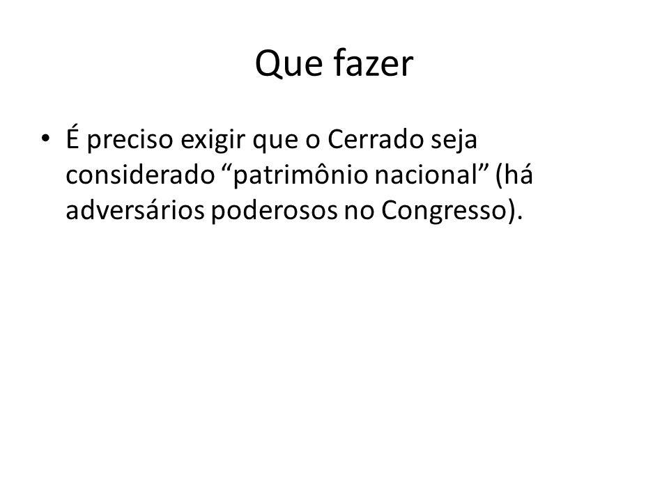 """Que fazer É preciso exigir que o Cerrado seja considerado """"patrimônio nacional"""" (há adversários poderosos no Congresso)."""