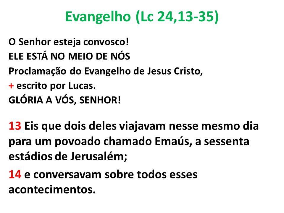 Evangelho (Lc 24,13-35) O Senhor esteja convosco! ELE ESTÁ NO MEIO DE NÓS Proclamação do Evangelho de Jesus Cristo, + escrito por Lucas. GLÓRIA A VÓS,