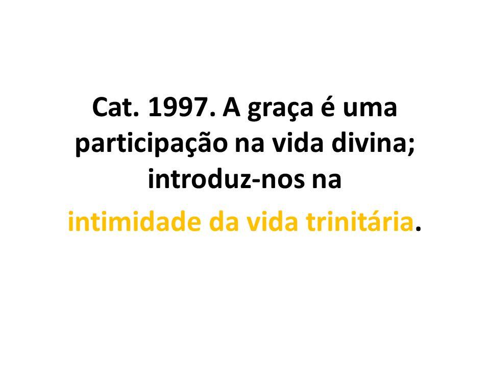 Cat. 1997. A graça é uma participação na vida divina; introduz-nos na intimidade da vida trinitária.