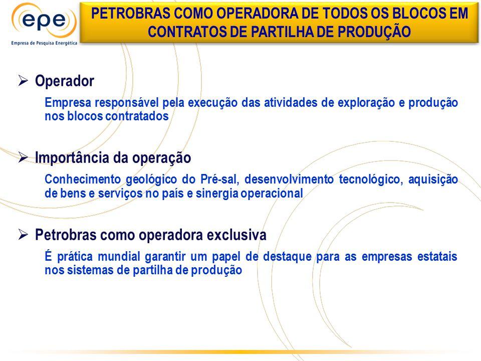  Operador Empresa responsável pela execução das atividades de exploração e produção nos blocos contratados  Importância da operação Conhecimento geo