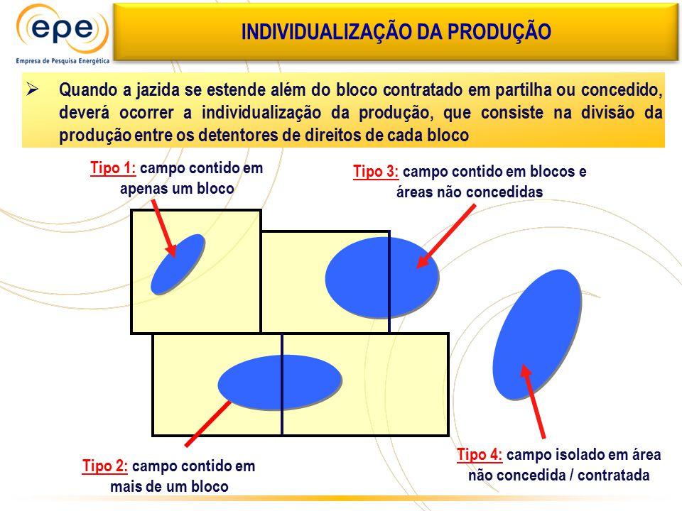 Tipo 4: campo isolado em área não concedida / contratada Tipo 1: campo contido em apenas um bloco Tipo 2: campo contido em mais de um bloco Tipo 3: ca