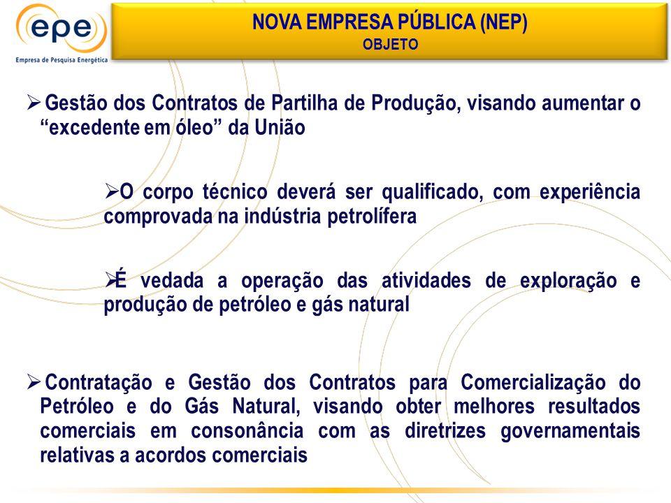 """ Gestão dos Contratos de Partilha de Produção, visando aumentar o """"excedente em óleo"""" da União  O corpo técnico deverá ser qualificado, com experiên"""
