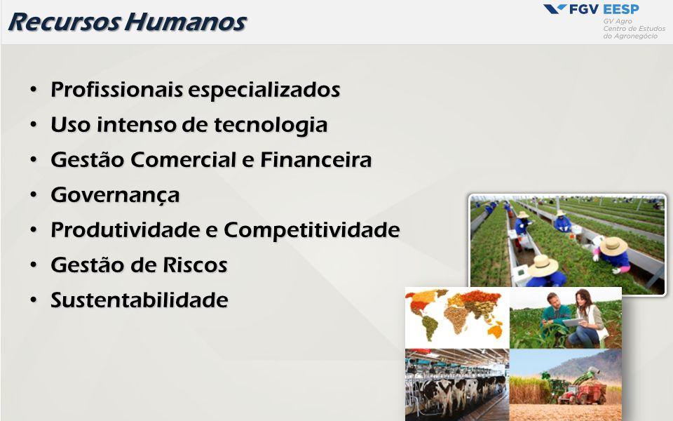 Recursos Humanos Profissionais especializados Profissionais especializados Uso intenso de tecnologia Uso intenso de tecnologia Gestão Comercial e Fina