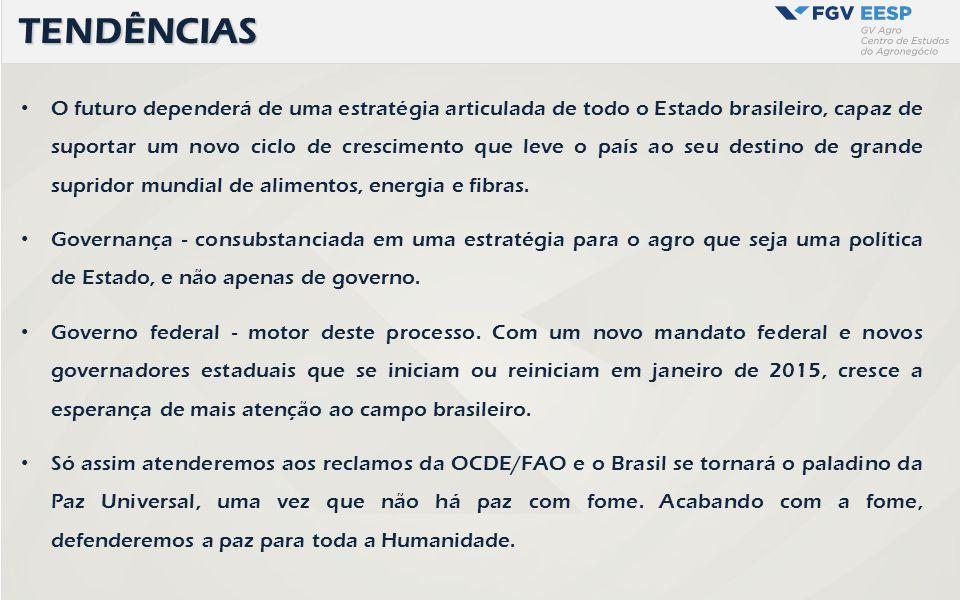 O futuro dependerá de uma estratégia articulada de todo o Estado brasileiro, capaz de suportar um novo ciclo de crescimento que leve o país ao seu des