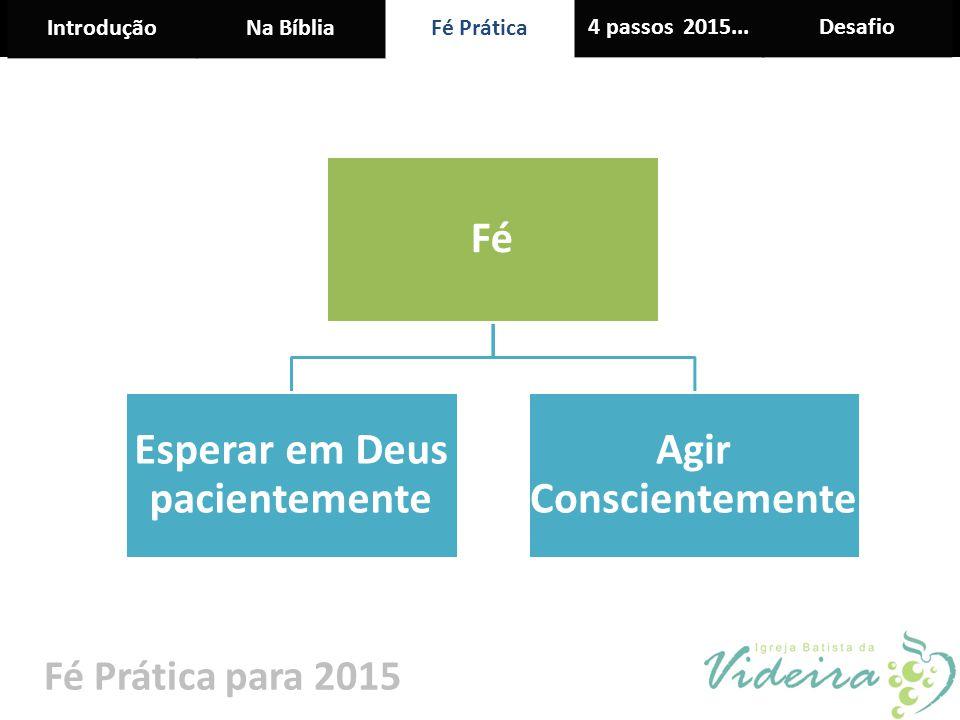 IntroduçãoNa BíbliaFé Prática 4 passos 2015...Desafio Fé Prática para 2015 Fé Esperar em Deus pacientemente Agir Conscientemente