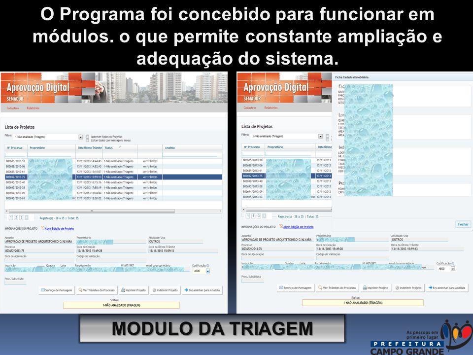 MODULO DA TRIAGEM O Programa foi concebido para funcionar em módulos.
