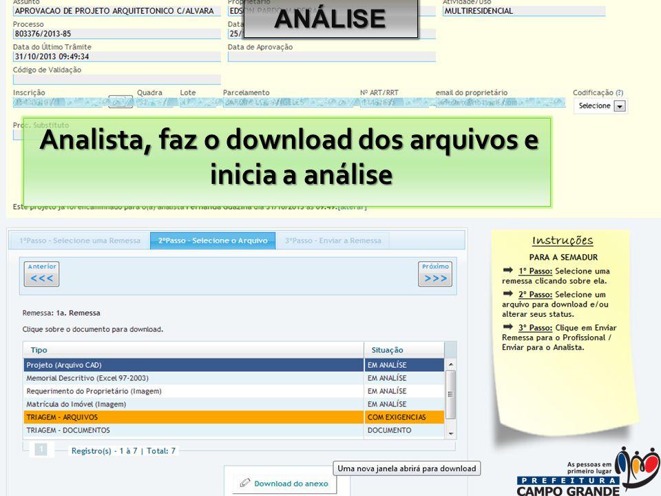 Analista, faz o download dos arquivos e inicia a análise ANÁLISE