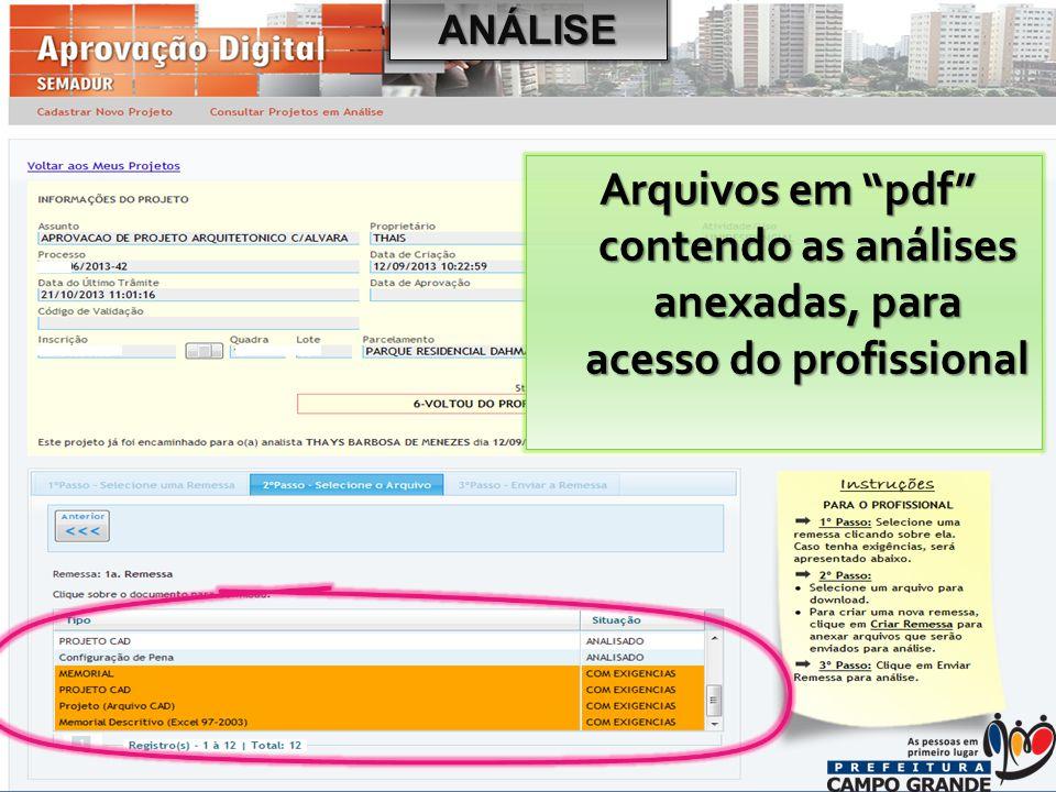 ANÁLISE Arquivos em pdf contendo as análises anexadas, para acesso do profissional