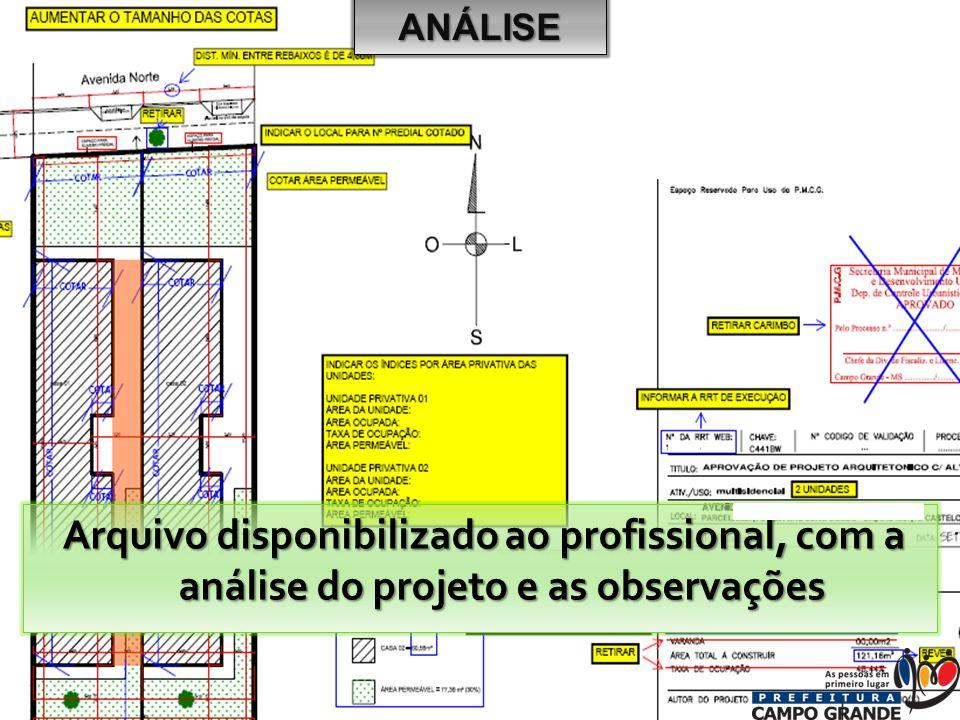 ANÁLISE Arquivo disponibilizado ao profissional, com a análise do projeto e as observações