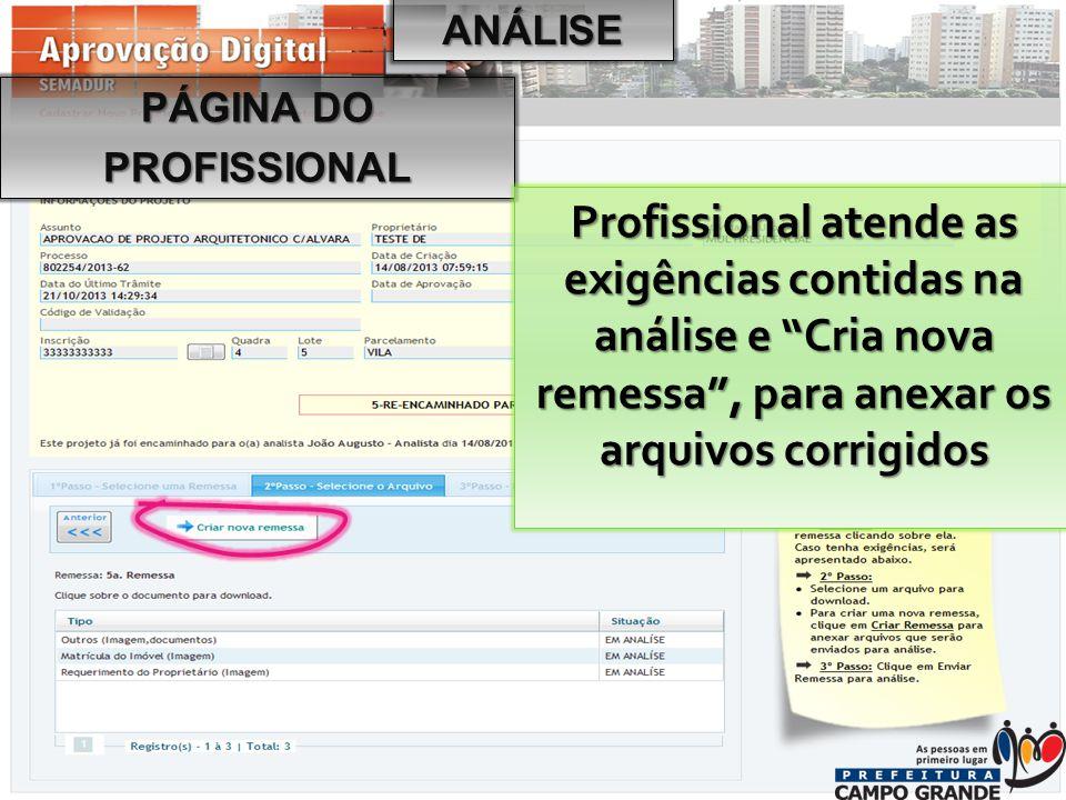 PÁGINA DO PROFISSIONAL Profissional atende as exigências contidas na análise e Cria nova remessa , para anexar os arquivos corrigidos ANÁLISE