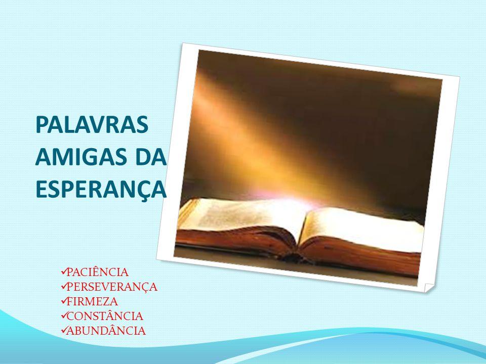 PALAVRAS AMIGAS DA ESPERANÇA PACIÊNCIA PERSEVERANÇA FIRMEZA CONSTÂNCIA ABUNDÂNCIA