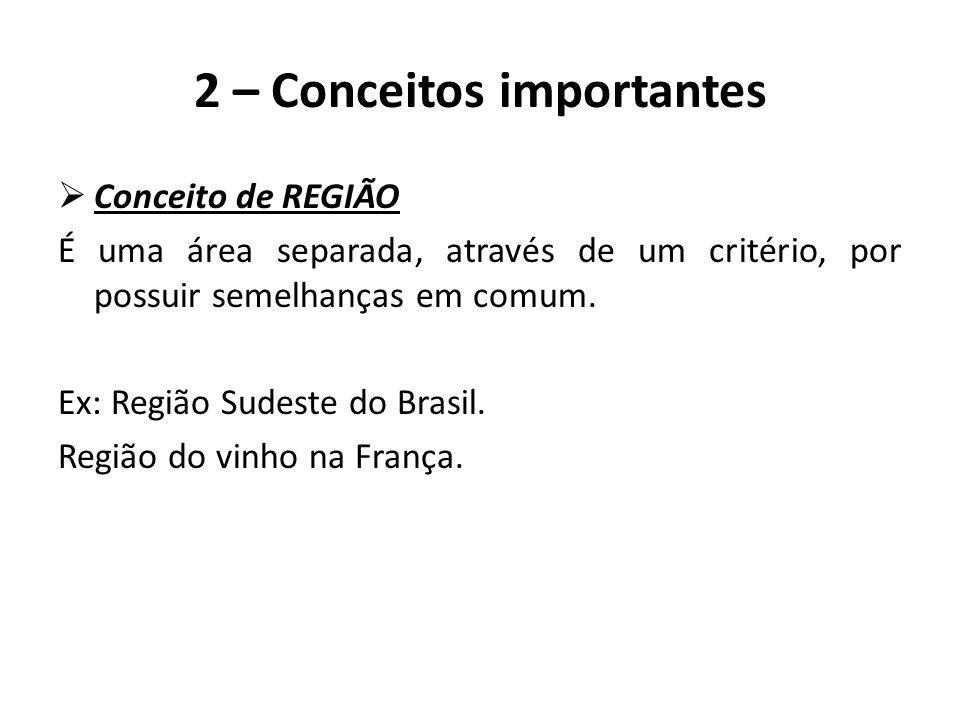  Conceito de REGIÃO É uma área separada, através de um critério, por possuir semelhanças em comum. Ex: Região Sudeste do Brasil. Região do vinho na F