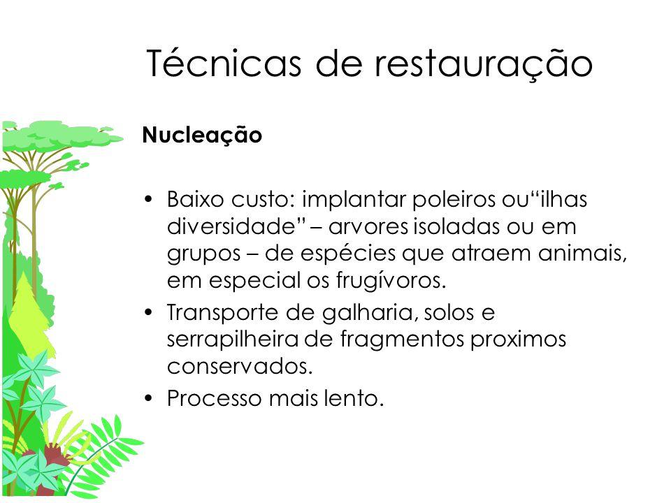 Técnicas de restauração Nucleação Baixo custo: implantar poleiros ou ilhas diversidade – arvores isoladas ou em grupos – de espécies que atraem animais, em especial os frugívoros.