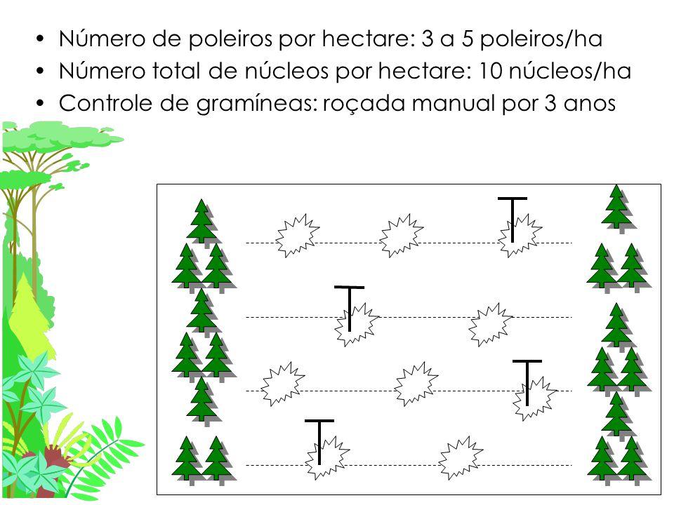 Número de poleiros por hectare: 3 a 5 poleiros/ha Número total de núcleos por hectare: 10 núcleos/ha Controle de gramíneas: roçada manual por 3 anos