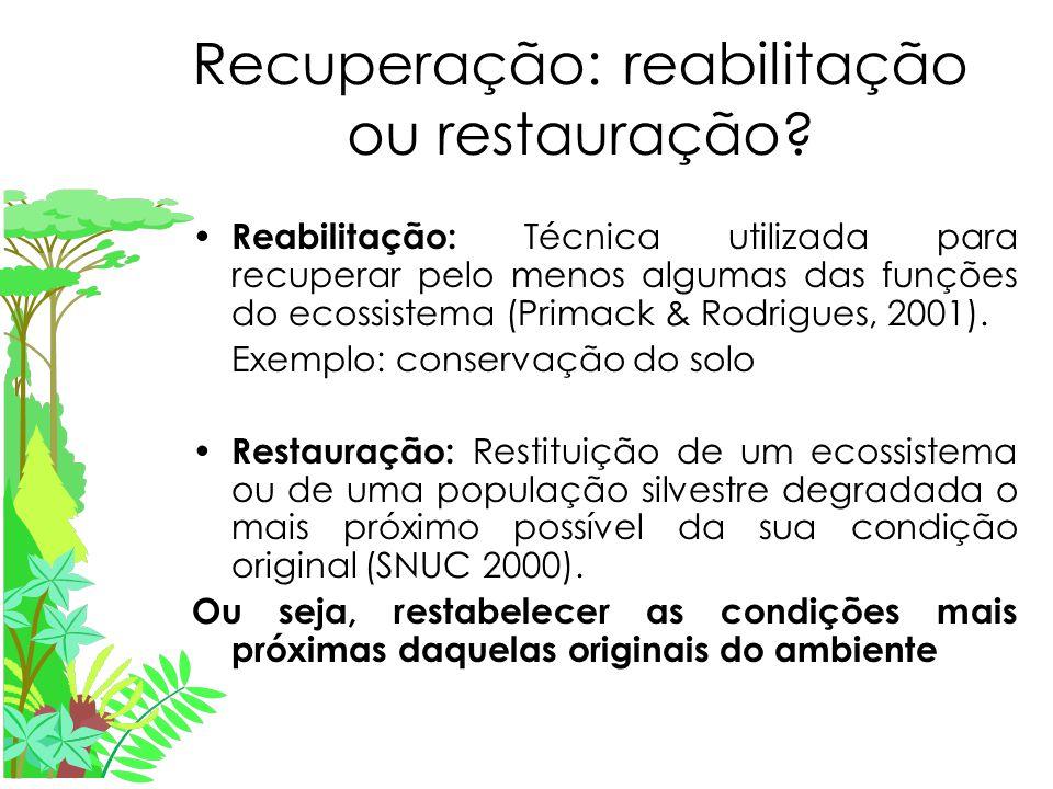 Recuperação: reabilitação ou restauração.