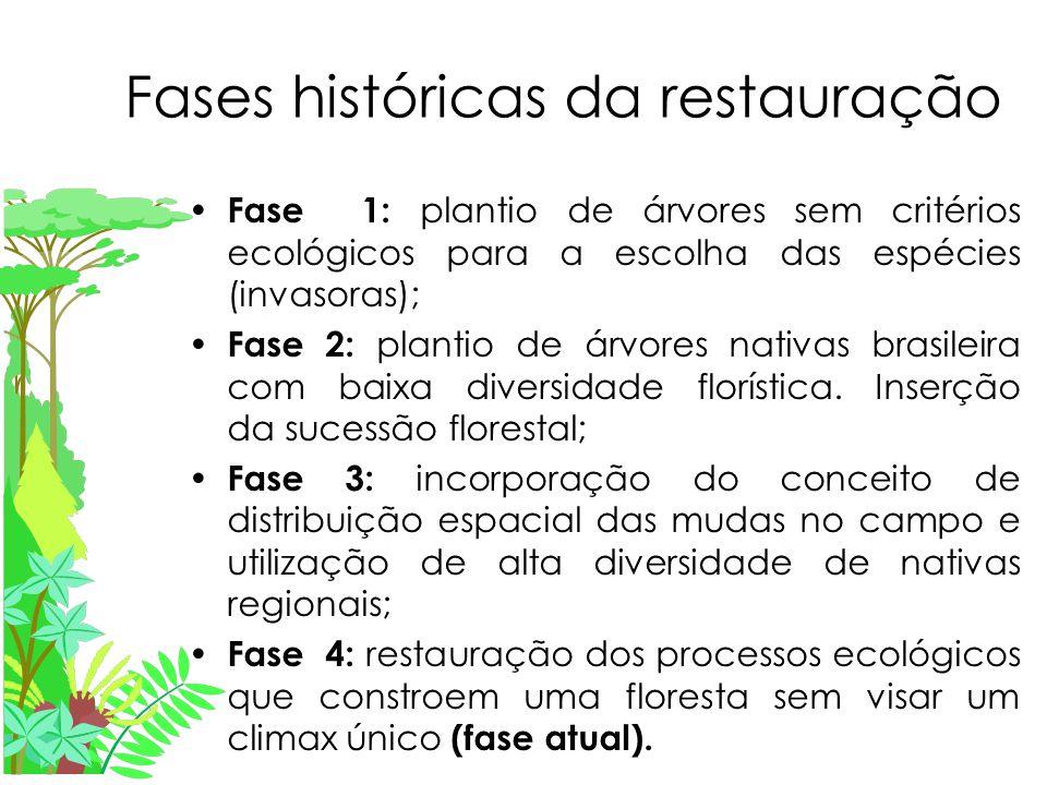 Fases históricas da restauração Fase 1: plantio de árvores sem critérios ecológicos para a escolha das espécies (invasoras); Fase 2: plantio de árvores nativas brasileira com baixa diversidade florística.